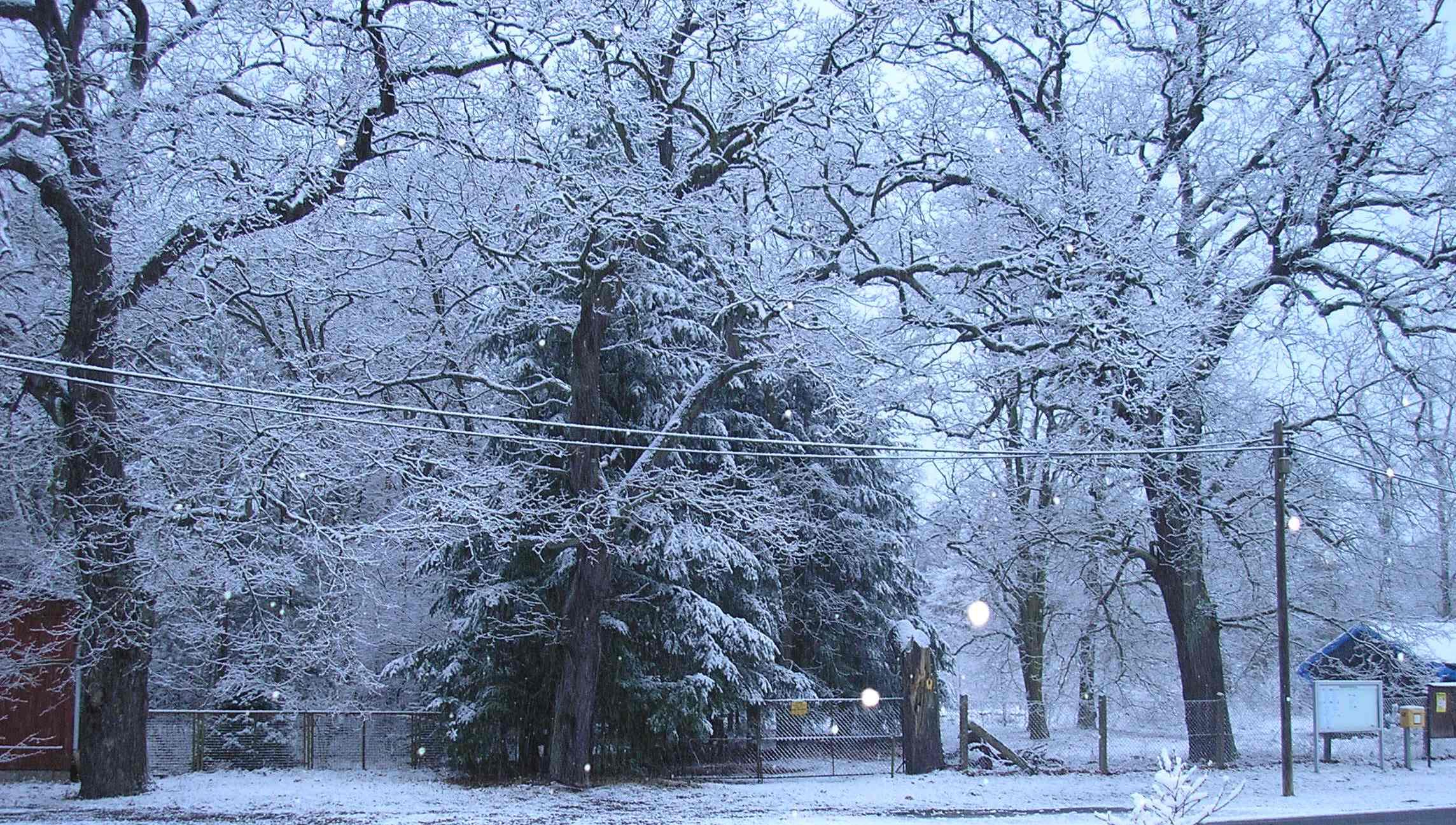Winterpanorama Alexanderdorf